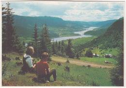 Parti Fra Gudbrandsdalen - Valley -  (Norge/Norway) - Noorwegen