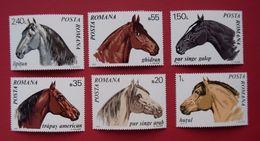 ROMANIA, 1970, HORSES, CHEVAUX - 1948-.... Republics