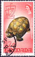 Grenada - Waldschildkröte (Chelonoidis Denticulata) (MiNr: 284) 1968 - Gest Used Obl - Grenada (...-1974)