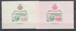 "Guinea 1965,2V In 2 Blocks,pavillon De Guinee A L""exposition Mondiale New York,MNH/Postfris(L3183) - Wereldtentoonstellingen"