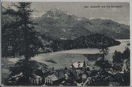 Campfer Und Piz Corvatsch - Photo: Wehrli - GR Grisons