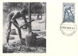 Afrique DAHOMEY (Benin)  Egreneur De Palmiste CARTE MAXIMUM Pub Ionyl Série A.O.F Timbre Stamp - Dahomey