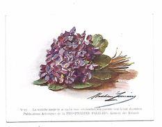 BON POINT 1915- N° 17 BOUQUET De VIOLETTES -  PUBLICITE Pour PHOSPHATINE FALIERES Editeur DEWAMBEZ Gr Par Madeleine .... - Diplômes & Bulletins Scolaires