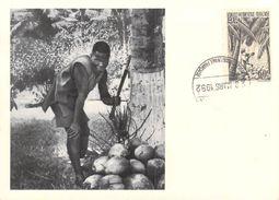 Afrique CÔTE D'IVOIRE Ramassage Et Décorticage Des Noix De Cocos CARTE MAXIMUM Pub Ionyl Série A.O.F Timbre Stamp - Côte-d'Ivoire