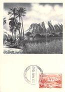 Afrique NIGER Les Hauts Du Niger CARTE MAXIMUM Pub Ionyl Série A.O.F Timbre Stamp - Niger