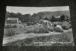548- Piampaludo, Giuochi Di Bimbi Sul Prato - 1953 - Savona