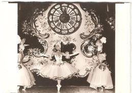 Cabaret Moulin Rouge - Carte Photo Originale - Sans éditeur - Dos Blanc - Animation - Cabaret