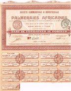 Action Ancienne - Société Commerciale Et Industrielle Des Palmeraies Africaines - Titre De 1920 - - Afrique