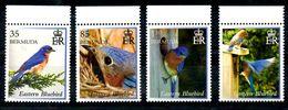 BERMUDA, 2014,BIRDS 4v. MNH** - Oiseaux