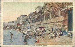 81322 ITALY NETTUNO ROMA VIEW BECH POSTAL POSTCARD - Italia
