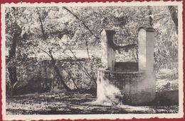 Boechout St Sint Gabrielinstituut N Hoekje In 't Park (in Zeer Goede Staat) - Boechout
