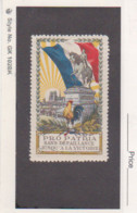 France WWI Orleans - Jeanne D'Arc - Red Cross Vignette Poster Stamp - Military Heritage