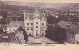 MEURSAULT L'HOTEL DE VILLE (dil225) - Meursault