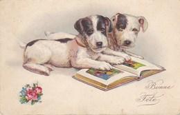 Wenskaart Bonne Fête, 2 Honden, Dogs, Chiens (pk39995) - Altri