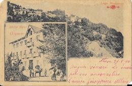 Lago Maggiore - Gignese: Albergo Alpino, Multivues - Ed. Grisoni Luigi - Carte Dos Simple 1900 N° 418 - Verbania