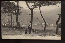 Les Pins De Saint Clair Pres Le Lavandou - Le Lavandou
