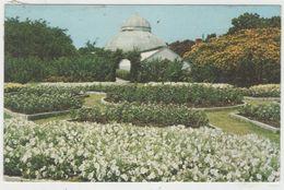 CPSM:  NORFOLK  (états-unis) :  Lafayette City Park En 1979.    (D2154) - Norfolk