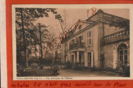 CPA 17  TAILLEBOURG   Vue Principale Du Chateau    Petits Personnages   Nov 2017 153 - France