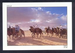 Tunisia/Tunisie - Postcard - Douz Art Festival Time - Excellent Quality - Tunisia