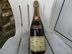 MARIE STUART Vintage 1988 Brut 0,75L REIMS Champagne Bouteille - Champagne & Mousseux
