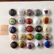 Cap. 53. Lot De 25 Capsules Différentes. - Champagne