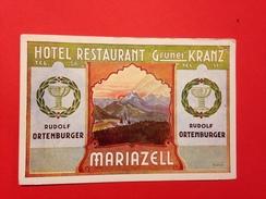 Mariazell 290 - Mariazell