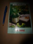 1960-1970 RIVIERA Pour Réussir Vos Coins De Décoration Avec Des Plantes - Publicités