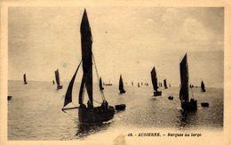 29)  AUDIERNE    -    Barques  Au Large - Audierne