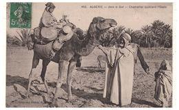 ALGÉRIE . DANS LE SUD . CHAMELIER QUITTANT L'OASIS - Réf. N°5471 - - Scènes & Types
