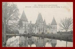 Théme Chateau : Bouaye * Chateau De La Noe    ( Scan Recto Et Verso ) - Bouaye