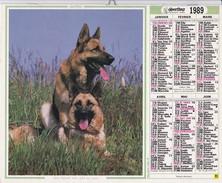 ALMANACH DU FACTEUR 1989 L OBERTHUR Jument Poulain  Berger Allemand - Big : 1981-90
