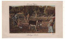 ALGÉRIE . Scénes Et Types . Attelage Arabe - Réf. N°5472 - - Algeria