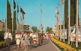 Disneyland Scene Of Tomorrowland Entrance, Posters, C1950s Vintage Postcard Series E-5 - Disneyland
