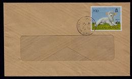 A5856 FALKLAND ISLANDS 1991, SG 697 Lamb On Local Port Stanley  Cover - Falkland