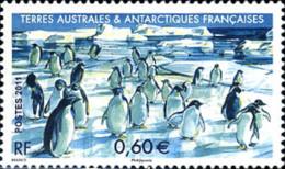 Ref. 278502 * NEW *  - FRENCH ANTARCTIC TERRITORY . 2012. FAUNA. FAUNA - Französische Süd- Und Antarktisgebiete (TAAF)