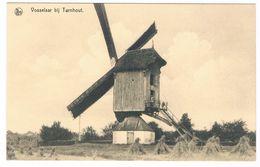 Vosselaar Bij Turnhout - (Molen Geanimeerd) - Vosselaar