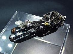 Hubnerite Crystal ( 3.5 X 1 X 0.7 Cm)- Hunan - China - Mineralen