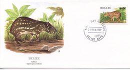 BELIZE  -   1989  GIBNUT  FDC458 - Belize (1973-...)