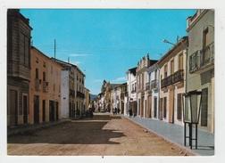 VERGEL (ALICANTE) / CALLE MAYOR - Alicante
