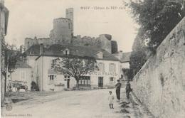 CV / 03 - BILLY - Château Du XIIIe Siècle (impeccable) - France