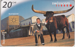 SWITZERLAND - PHONE CARD  ***   BUFFLE & CIRQUE KNIE  *** - Vaches