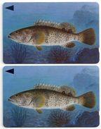 Bahrain - Grouper Fish Of Bahrain - 2 Variations 40BAHJ (O-Ø), 1996, Used - Bahrain