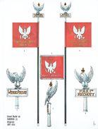 Planche Rigo - Le Plumet D1 Drapeaux - Grand Duché De Varsovie (1) 1807-1814 - Histoire