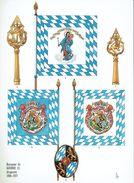 Planche Rigo - Le Plumet D3 Drapeaux - Royaume De Bavière (1) 1816-1813 - Histoire