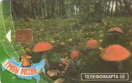 TARJETA TELEFONICA DE RUSIA, Setas - Mushrooms - CHAMPIGNONS - FUNGHI. (575) - Bloemen