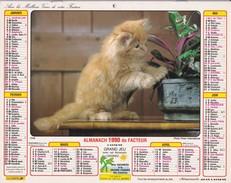 Almanach   Du Facteur LAVIGNE 1990 - Big : 1981-90