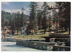 VARS LES CLAUX--1966--Les Chalets  (l'été)--voiture Citroen DS (à Gauche)........à  Saisir - Autres Communes
