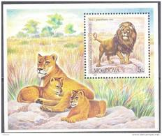 2001. Moldova, Lyon, Kishinev Zoo, S/s, Mint/** - Moldavia