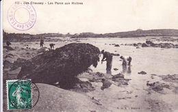 Cpa 50 Iles Chausey Les Parcs Aux Huitres N° 173 Cachet Hotel Des Iles - Other Municipalities