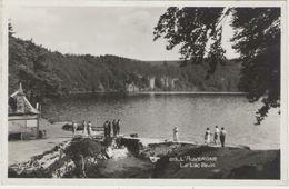CPSM:  L' AUVERGNE (Dpt63):  Près De Besse-en Chadesse, Le Lac Pavin.   (photo Véritable)  (D2177) - Auvergne Types D'Auvergne